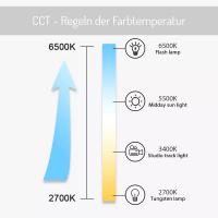 CCT Steuergerät Controller ZigBee kompatibel